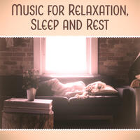 Music for Relaxation, Sleep and Rest – Gentle Melodies to Pillow, Famous Composers for Sleep, Relaxing Time, Calm Night