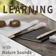 Learning with Nature Sounds – Soft Sounds of Nature, Calming Sounds to Relax, Learning Music