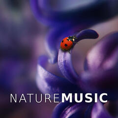 Nature Music - Sound Therapy, Ocean Waves, Touch My Body, Ambient Waterfall Sounds