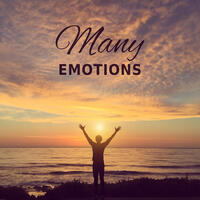 Many Emotions – Laugh, Happy, Beam, Grin, Feeling, Happiness, Love, Passion, Physicality, Tranquility