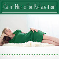 Calm Music for Relaxation – Sounds After Work, Songs for Soul, Anti Stress Music, Bach, Mozart, Beethoven