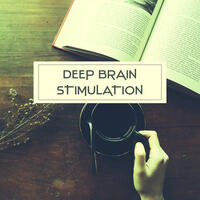 Deep Brain Stimulation – Music for Study, Increase Concentration, Train Your Brain, Composers to Work