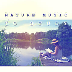 Nature Music to Study – Best Music to Concentrate, Calming Sounds of New Age, Stress Relief
