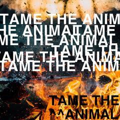 Tame the Animal