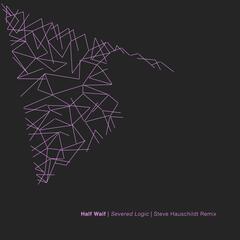 Severed Logic (Steve Hauschildt Remix)