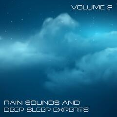 Rain Sounds and Deep Sleep Experts, Vol. 2