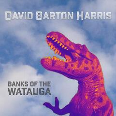 Banks of the Watauga