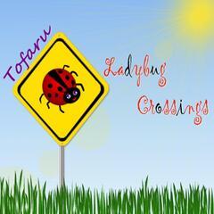 Ladybug Crossings