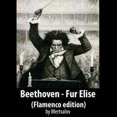 Beethoven: Fur Elise (Flamenco Edition)