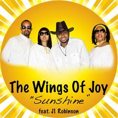 The Wings of Joy (feat. J1 Robinson)