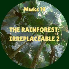 The Rainforest: Irreplaceable 2