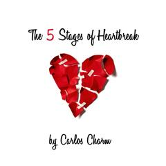 The 5 Stages of Heartbreak