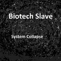 System Collapse