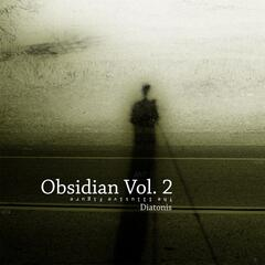 Obsidian, Vol. 2: The Illusive Figure