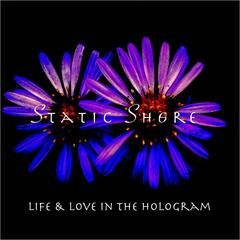 Life & Love in the Hologram