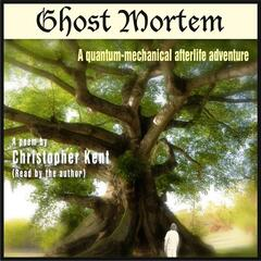 Ghost Mortem (A Quantum Mechanical Afterlife Adventure)