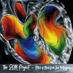 The Som Project