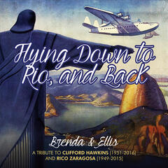 Flying Down to Rio - - And Back