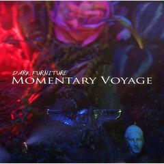 Momentary Voyage