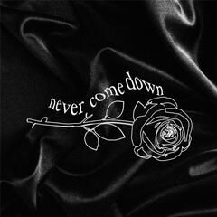 Never Come Down