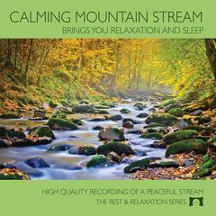 Calming Mountain Stream (Brings You Relaxation and Sleep)