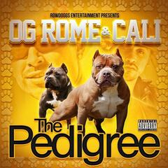 The Pedigree