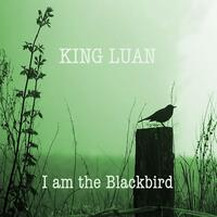 I Am the Blackbird