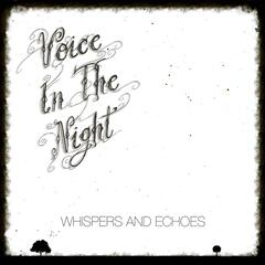 Voice in the Night: Whispers and Echoes