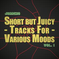 Short but Juicy Tracks for Various Moods, Vol. I