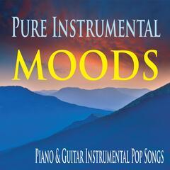 Pure Instrumental Moods: Piano & Guitar Instrumental Pop Songs