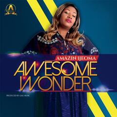 Awesome Wonder