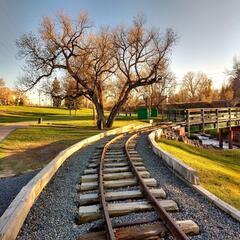 Coal Train Blues