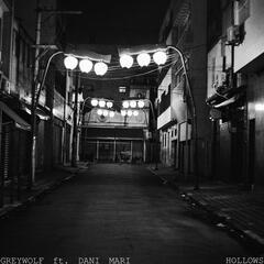 Hollows (feat. Dani Mari)