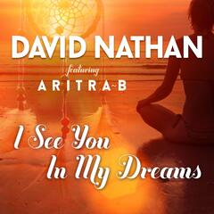 I See You in My Dreams (feat. Aritra B)