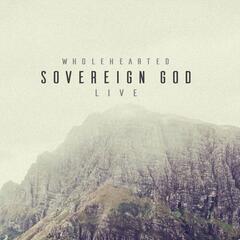 Sovereign God (Live)