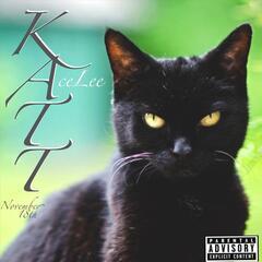 Katt November 18th