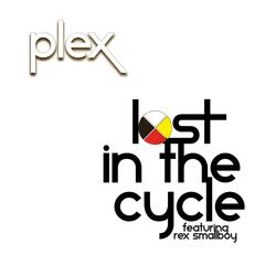 Lost in the Cycle (feat.  Rex Smallboy)