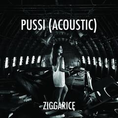 Pussi (Acoustic Version)