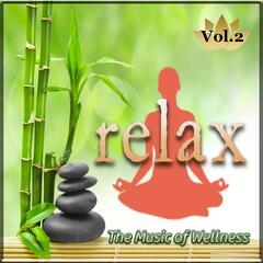 The Music of Wellness 'Relax', Vol. 2