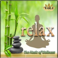 The Music of Wellness 'Relax', Vol. 1