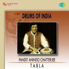 Drums of India - Pt. Anindo Chatterjee