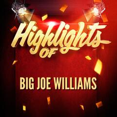 Highlights of Big Joe Williams