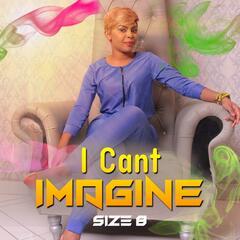 I Can't Imagine