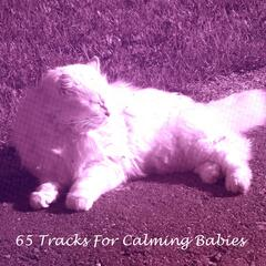 65 Tracks For Calming Babies