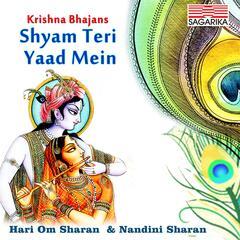 Shyam Teri Yaad Mein