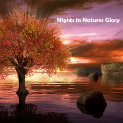 Night In Natures Glory