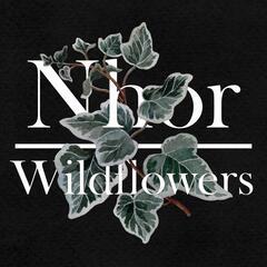 Wildflowers: Autumn