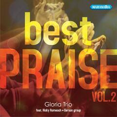 Best Praise, Vol. 2
