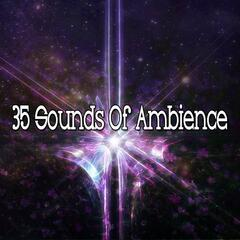 35 Sounds Of Ambience