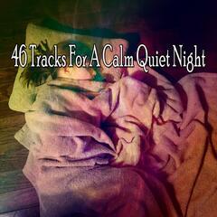 46 Tracks For A Calm Quiet Night